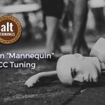Open Tuning CGCECC – Key Of C Major